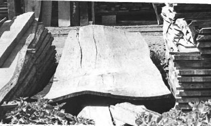 Усадка древесины, ее типы и причины возникновения деформации